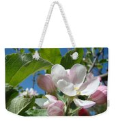Spring Apple Blossoms Pink White Apple Trees Baslee Troutman Weekender Tote Bag