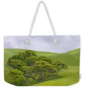 Spring At Del Valle Weekender Tote Bag