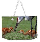 Spring Babies  Weekender Tote Bag