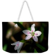 Spring Beauty Weekender Tote Bag