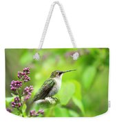 Spring Beauty Ruby Throat Hummingbird Weekender Tote Bag by Christina Rollo