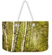Spring Birches Woods Footpath Weekender Tote Bag
