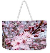 Spring Blossoms Art  Pink Tree Blossom Baslee Troutman Weekender Tote Bag