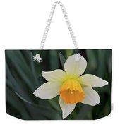 Spring Bow Weekender Tote Bag