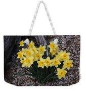Spring Cheerleaders - Daffodils Weekender Tote Bag
