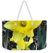 Spring Daffodil Weekender Tote Bag