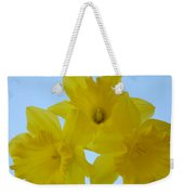 Spring Daffodils 2 Flowers Art Prints Gifts Blue Sky Weekender Tote Bag