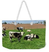 Spring Day With Cows On An Amish Cattle Farm Weekender Tote Bag
