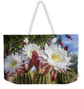 Spring Easter Cactus Blooms 789 Weekender Tote Bag