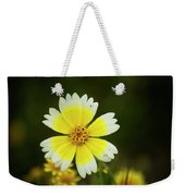 Spring Flowers Shell Road Weekender Tote Bag