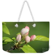 Spring Highlights Weekender Tote Bag
