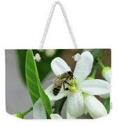 Spring Honey Bee Pollinates Orange Citrus Flower Weekender Tote Bag