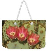 Spring In Arizona Weekender Tote Bag