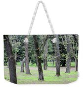 Spring In Rome Weekender Tote Bag