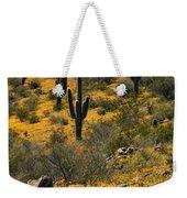 Spring In The Sonoran Desert  Weekender Tote Bag