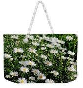 Spring Loyal Love Daisies  Weekender Tote Bag