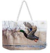 Spring Mallard  Weekender Tote Bag