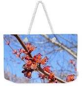 Spring Maple Blossoms Weekender Tote Bag