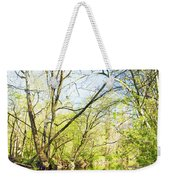 Spring On A Pennsylvania Stream, Fairmount Park, Philadelphia Weekender Tote Bag