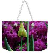 Spring Series #05 Weekender Tote Bag