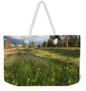 Spring Shadows Weekender Tote Bag by Mike  Dawson