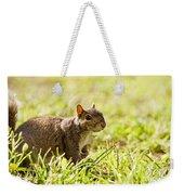 Spring Squirrel Weekender Tote Bag