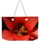 Spring Star Weekender Tote Bag