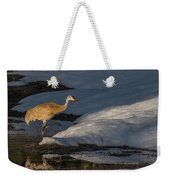 Spring Sunset With Sandhill Crane Weekender Tote Bag