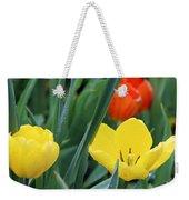Spring Tulips 144 Weekender Tote Bag