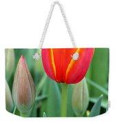 Spring Tulips 211 Weekender Tote Bag