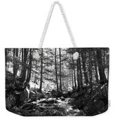 Spring Wood Weekender Tote Bag