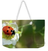 Springtime - Animals Weekender Tote Bag