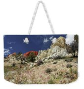 Springtime At Red Rock Canyon Weekender Tote Bag