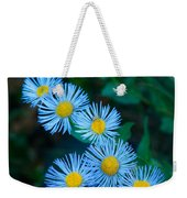 Springtime In Grand Teton Weekender Tote Bag
