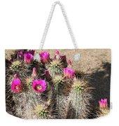Springtime In The Desert Weekender Tote Bag