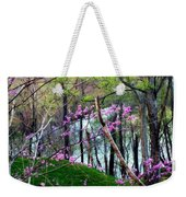 Springtime In The Mountains 2 Weekender Tote Bag