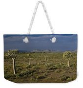 Springtime In The Western Cape Weekender Tote Bag