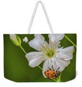 Springtime Ladybug Weekender Tote Bag