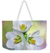 Springtime Triplets By Kaye Menner Weekender Tote Bag