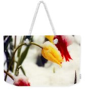 Springtime Tulips In The Snow Poster Print Weekender Tote Bag