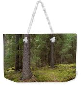 Spruce Forest  Weekender Tote Bag