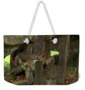 Squatting Squirrel Weekender Tote Bag