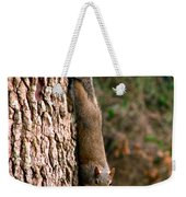 Squirrel 6 Weekender Tote Bag