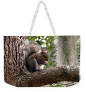 Squirrel 7 Weekender Tote Bag