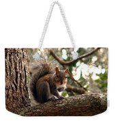 Squirrel 8 Weekender Tote Bag