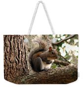 Squirrel 9 Weekender Tote Bag