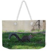 Squirrel At A Stand Still Weekender Tote Bag