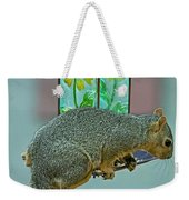 Squirrel At The Bird Feeder Weekender Tote Bag