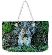 Squirrel Friend Weekender Tote Bag