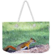 Squirrel In The Park Weekender Tote Bag